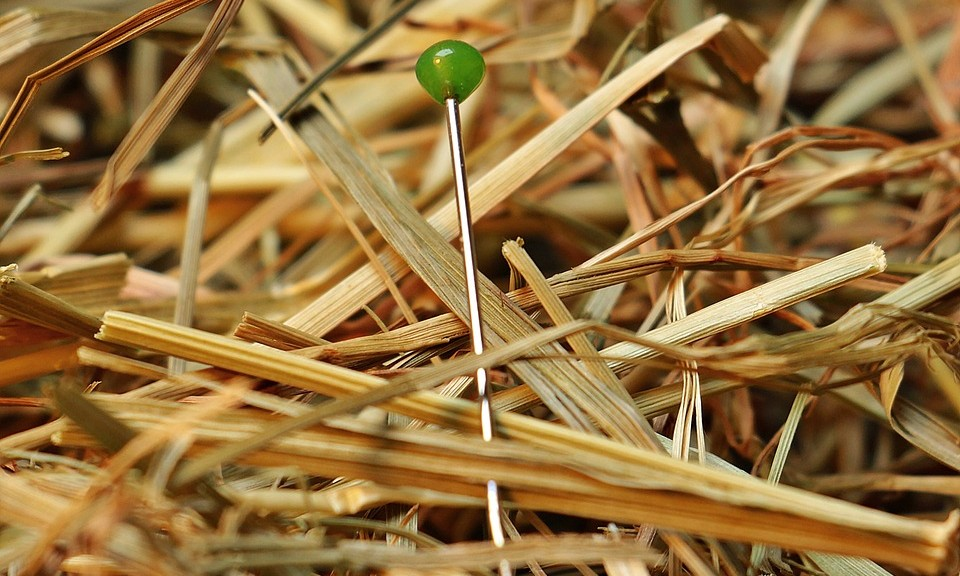 Bilinugal recruitment specialists can help you find a needle in a haystack